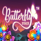 butterfly-staxx
