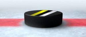 Schwedische Hockey Liga 2019 / 2020